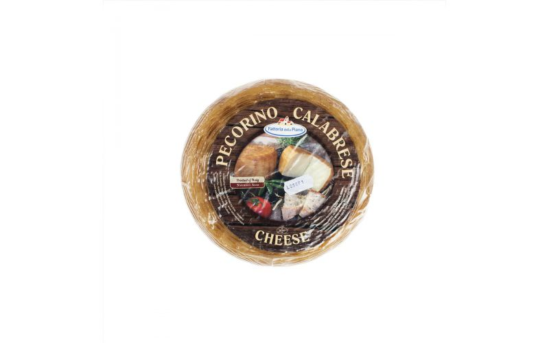 Pecorino Crotonese Cheese