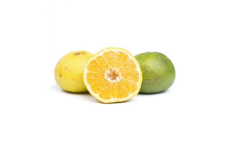 blue fruit ugli fruit