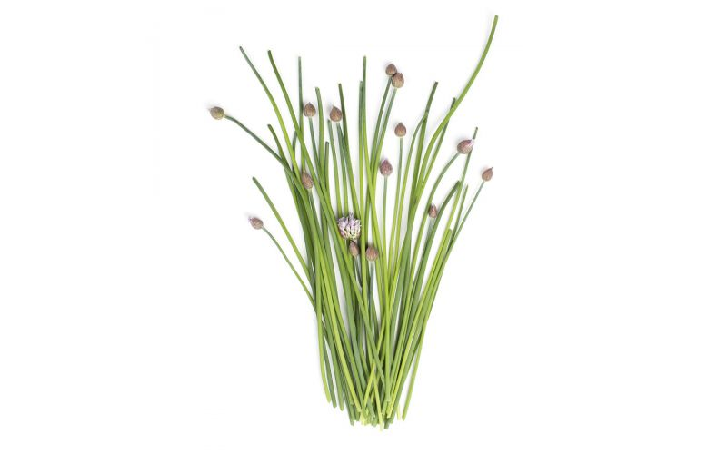 Hepworth Farms Organic Flowering Chives
