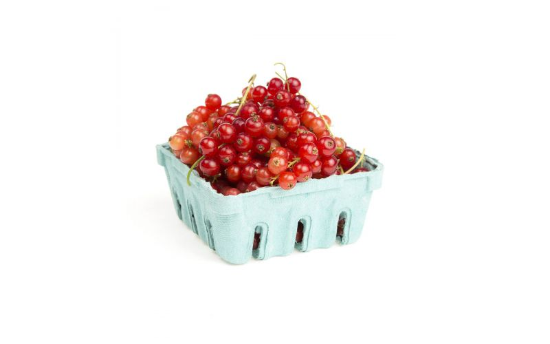 Local Red Currants