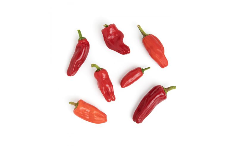 Organic Aleppo Peppers