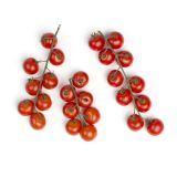 Cherry No.9 Fall in Love Again® Tomatoes