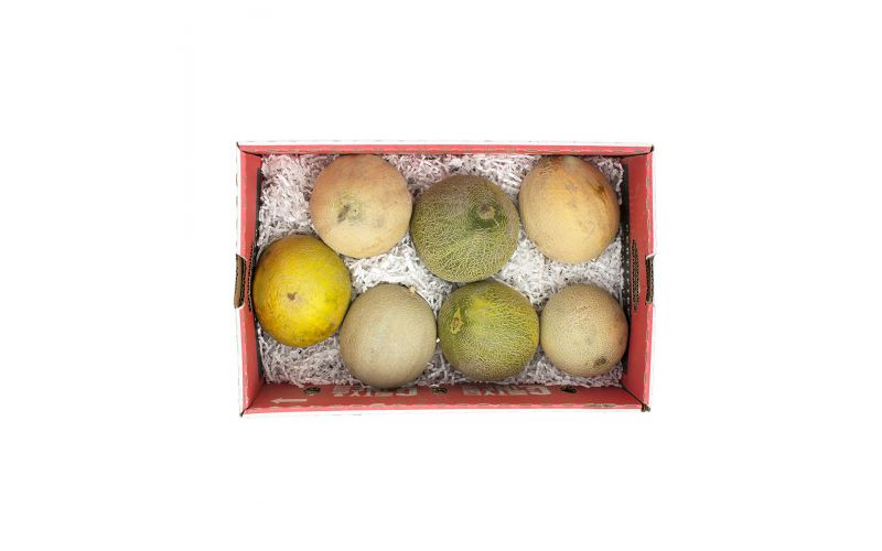 County Line Organic Toy Box Mixed Melons