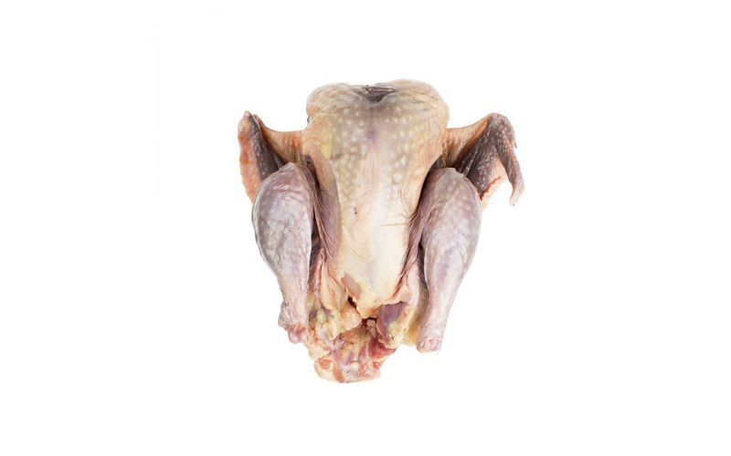 Frozen Whole Guinea Hen